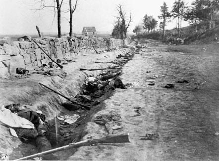 Sunken Road after the battle.Photo credit: National Park Service, http://www.nps.gov/frsp/fredhist.htm